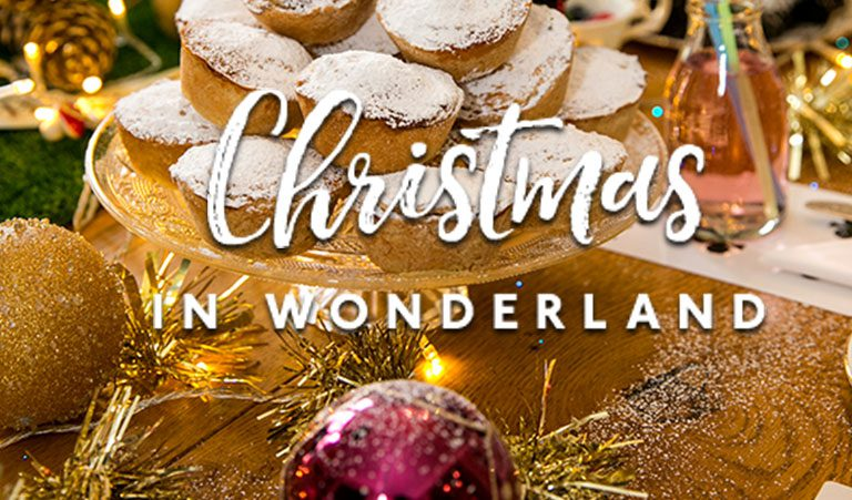 Christmas in Wonderland House